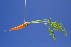 carrot stick string bait motivation